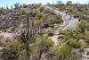 Cyclist(s) in Saguaro Nat'l Park, Arizona - 3-15 - C3 -0091 - 72 ppi