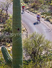 Cyclist(s) in Saguaro Nat'l Park, Arizona - 3-15 - C3 -0051 - 72 ppi-3