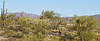 Cyclist(s) in Saguaro NP east, AZ - D1-C1 #2-0014 - 72 ppi