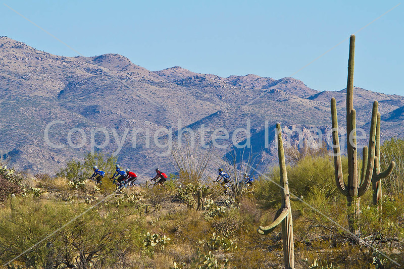 1 - Cyclist(s) in Saguaro NP east, AZ - D1-C1-0172 - 72 ppi