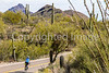 Sojourn cyclists in Tucson Mountain Park - D3 - C3-0354 - 72 ppi