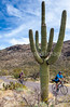 Sojourn cyclists in Saguaro NP East - D2-C2-0100 - 72 ppi