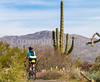 Sojourn cyclists in Saguaro NP East - D2-C3-0125 - 72 ppi-2