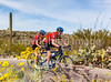 Sojourn cyclists in Saguaro NP East - D2-C2-0040 - 72 ppi