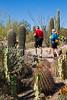Arizona-Sonora Desert Museum - D2-C3 -0104 - 72 ppi