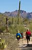 Arizona-Sonora Desert Museum - D2-C1-0080 - 72 ppi