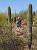 Arizona-Sonora Desert Museum - D2-C3 -0094 - 72 ppi