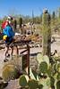 Arizona-Sonora Desert Museum - D2-C3 -0097 - 72 ppi