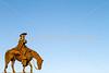 Father Kino statue in Tucson, AZ - C3-0035 - 72 ppi