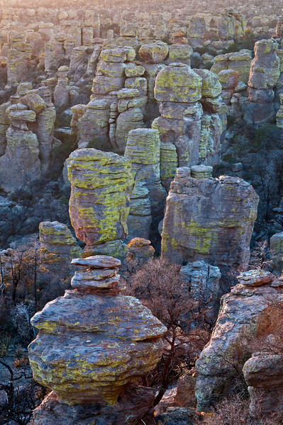 AZ 060                          Sunset light on the hoodoos of Echo Canyon in Chiricahua National Monument, southeastern Arizona.