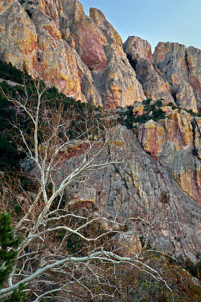 AZ 064                       Chiricahua Color.  Soft light at dusk on the walls of Cave Creek Canyon, southeastern Arizona.