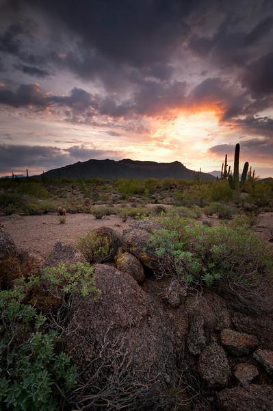 AZ 027                    The sun rises over Usery Mountain in Usery Mountain Regional Park, Mesa, Arizona.