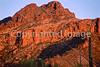 Organ Pipe Cactus Nat'l Monument in Arizona - 12 - 72 ppi