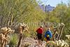 Arizona-Sonora Desert Museum - D2-C3 -0128 - 72 ppi