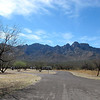 View of the Santa Catalina mountains from the campground. Trees were just starting to come alive.