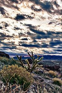 C_Monolith_Garden_Trail0003
