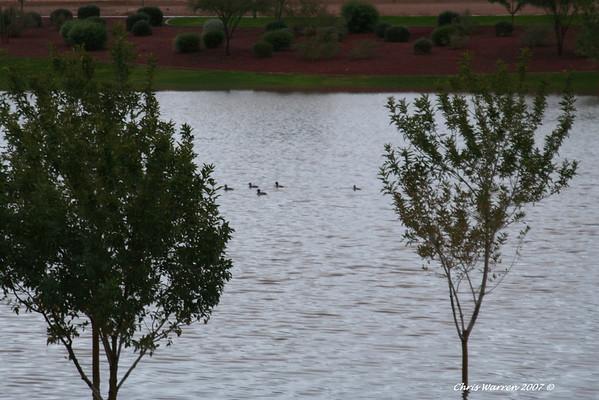Fall Storm over Arizona 12-1-07