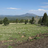 View from Snowbowl of Kendrick Peak, NW of Flagstaff