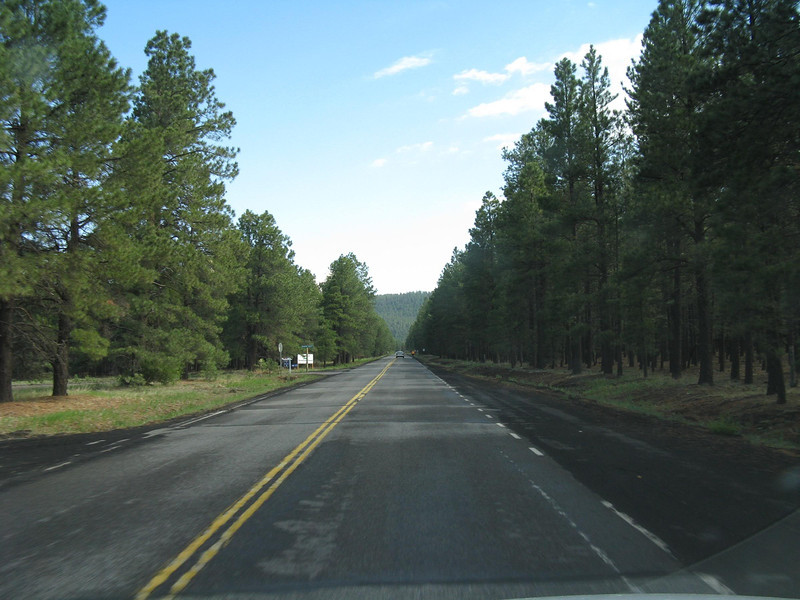Heading north on Hwy 180 from Flagstaff