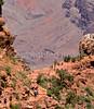 Hikers in Grand Canyon National Pari,  AZ - 46 - 72 dpi-2