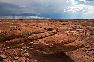 Navajo tribal land, upper Triassic Moenave - fluvial channel sandstone cross bedding