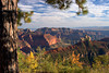 Grand Canyon National Park, AZ/Oct. The North Rim as seen from Vista Encantada looking NE.