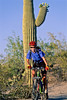 Cactus Forest Trail in Saguaro Nat  Pk , AZ - 3 - 72 ppi