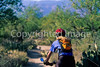 Cactus Forest Trail in Saguaro Nat  Pk , AZ - 50 - 72 ppi