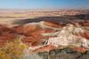 Painted Desert view from Kachina Point. Petrified Forest National Park, AZ<br /> <br /> AZ-201028-0052