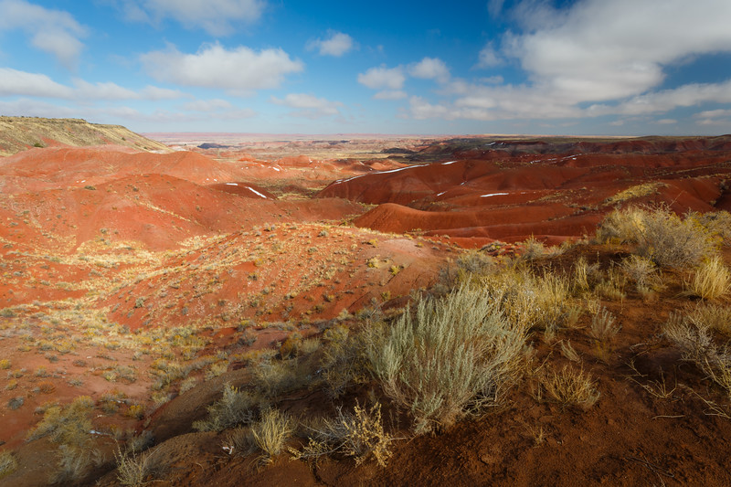 Painted Desert view from Tiponi Point. Petrified Forest National Park, AZ<br /> <br /> AZ-201028-0013