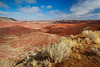 Painted Desert view from Tiponi Point. Petrified Forest National Park, AZ<br /> <br /> AZ-201028-0023