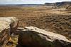 Puerco Pueblo petroglyphs. Petrified Forest National Park, AZ<br /> <br /> AZ-201028-0108