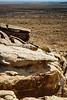 Puerco Pueblo petroglyphs. Petrified Forest National Park, AZ<br /> <br /> AZ-201028-0099