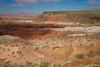 Painted Desert view from Whipple Point. Petrified Forest National Park, AZ<br /> <br /> AZ-201028-0074