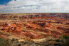 Painted Desert view from Tawas Point. Petrified Forest National Park, AZ<br /> <br /> AZ-201028-0031