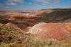 Painted Desert view from Nizhoni Point. Petrified Forest National Park, AZ<br /> <br /> AZ-201028-0065