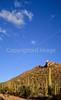 Biker on Hohokam Rd , west side of Saguaro NP in AZ - 14 - 72 ppi