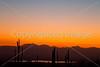 Saguaro National Park (west), AZ - D1-C3-0217 - 72 ppi