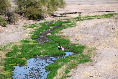 Santa Cruz River, Tucson Arizona