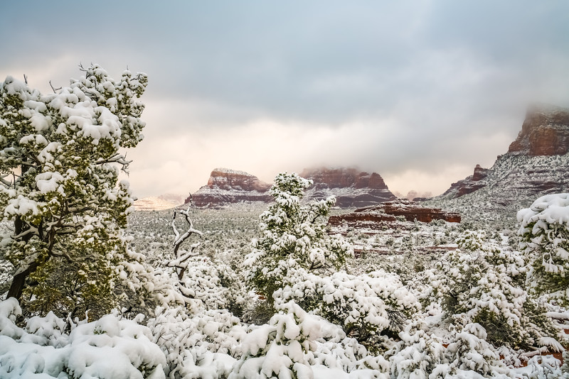Morning Snow in Sedona