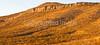 Arizona Hwy 80 between Tombstone & Bisbee  D4-C3 -0160 - 72 ppi-2