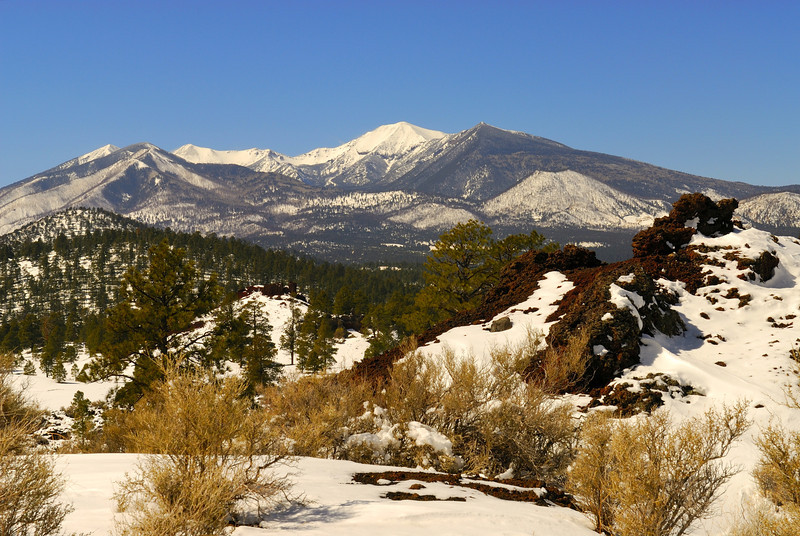 Looking over the Sunset Crater lava flow toward the San Francisco Peaks.
