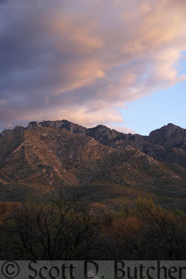 Catalina State Park, Arizona