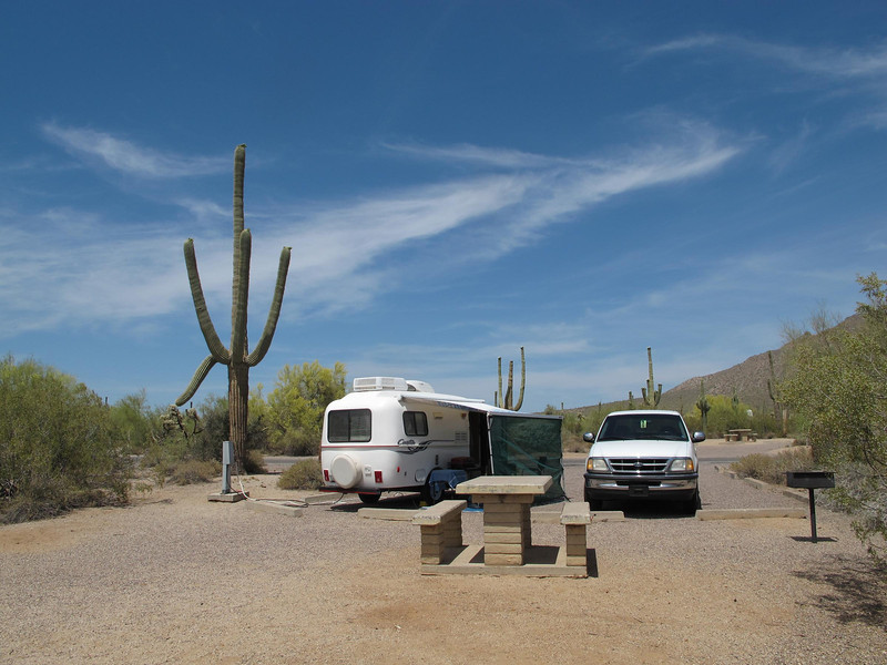 Hope that saguaro stays put during my stay