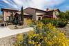 The Olive Garden restaurant in Casa Grande, Arizona, USA.