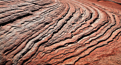 Dune crossbed set convergence White Pocket