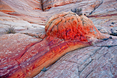 Iron and manganese adds color to the white Navajo Sandstone Coyote Buttes North
