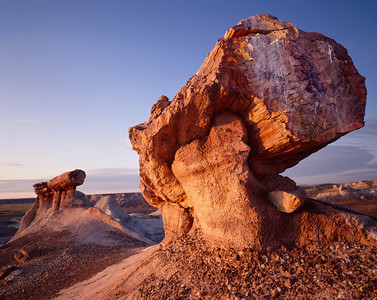 Petrified Forest National, AZ/Park, Blue Mesa, Pedestal Logs at sunrise.  991h