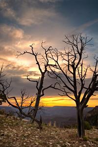 Sunrise along Rim Drive in Grand Canyon National Park in Arizona.  © Kyle Spradley Photography | http://www.kspradleyphoto.com
