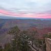 Grand Canyon Alpenglow